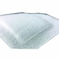 Category Image for Absorptive Dressings